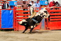 Rodeo, Luxton, Cowboy, Bull Riding