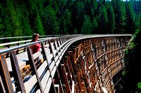 Kinsol Trestle, bridge, Shawnigan Lake, sightseeing