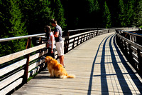 Lia and Kiel, Kinsol Trestle, Shawnigan Lake, Golden Retriever, Walker