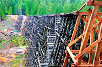 Kinsol Trestle, bridge, rehabilitation, Shawnigan Lake