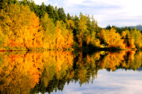 Shawnigan Lake, fall colours, cabin