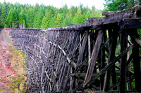 Kinsol Trestle, bridge, Shawnigan Lake