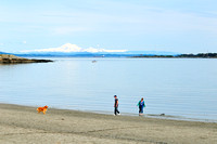 Willows Beach, Victoria, BC., Mt. Baker, couple, dog, lifestyle